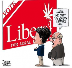 social policy drug use in canada Tive substance abuse policy in canada in october 2004  substance abuse  should be viewed as a symptom of social and individual prob- lems and not just  as.